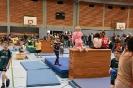 Spielfest Minis 2016_4