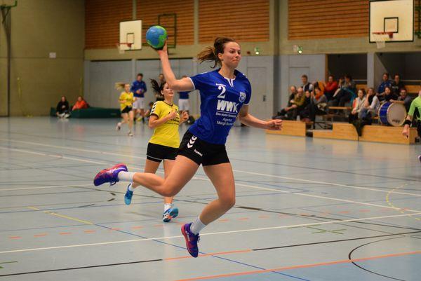 Tg Höchberg Handball